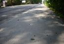 A na śniadanie serwujemy ciepły asfalt…